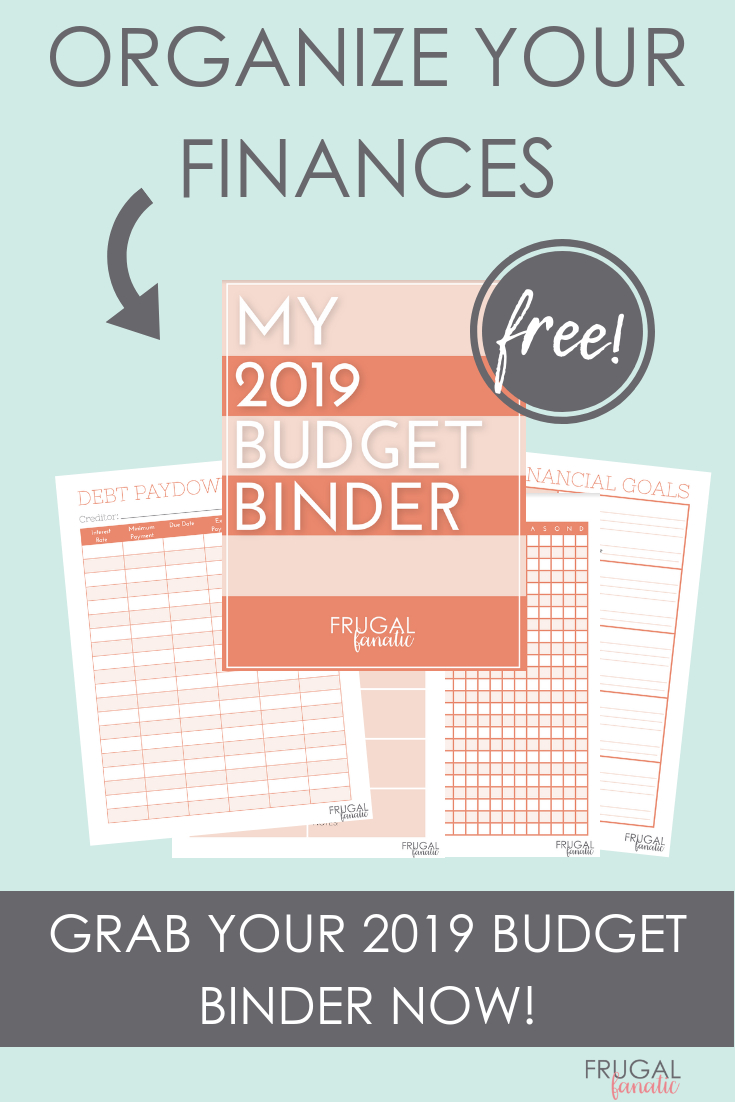 2019 Budget Binder Worksheets  Free Download  Frugal Fanatic Inside Free Printable Budget Binder Worksheets