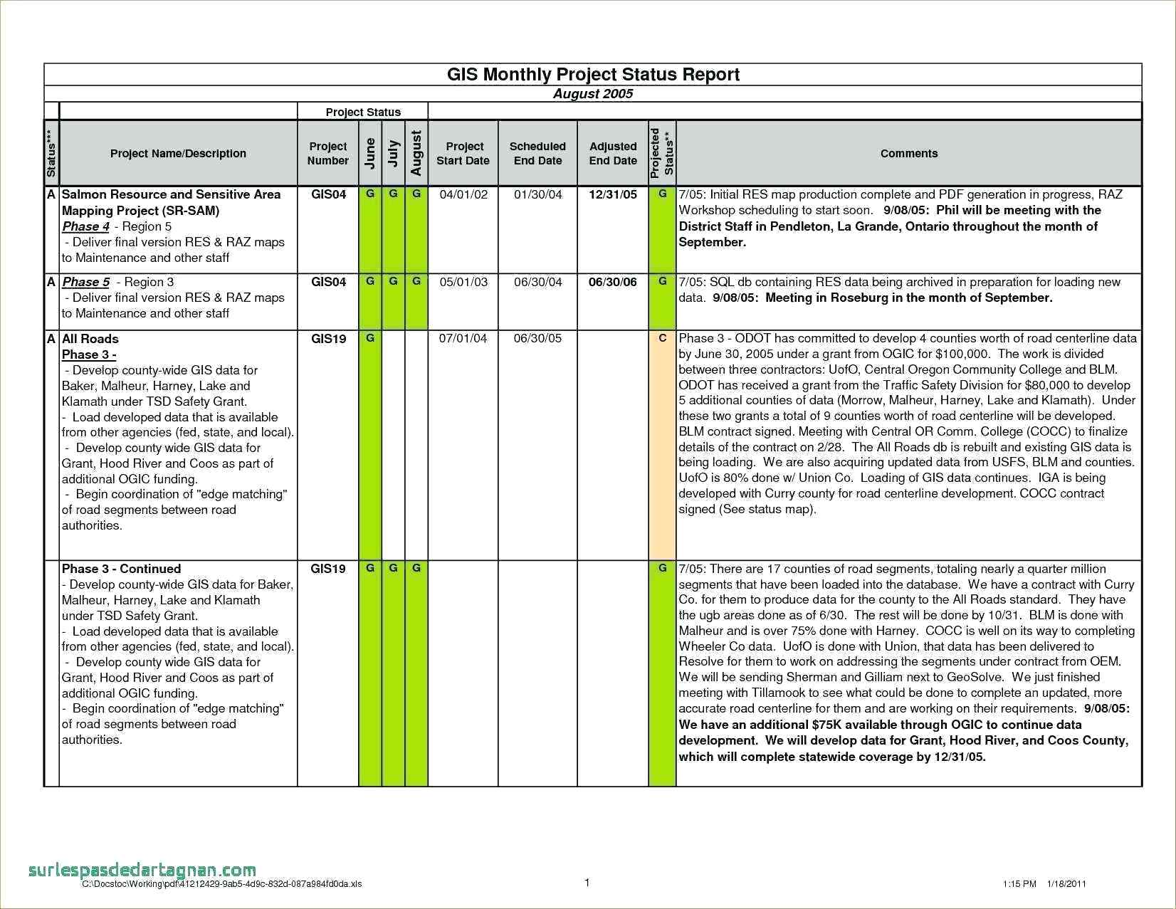Blank Project Status Report Template Excel With Project Status Report Template Excel Xls