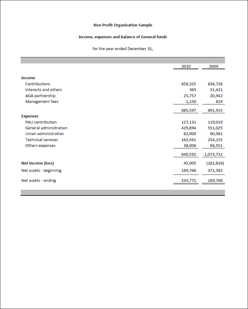 Free Non Profit Financial Statement Template Excel Within Non Profit Financial Statement Template Excel For Free