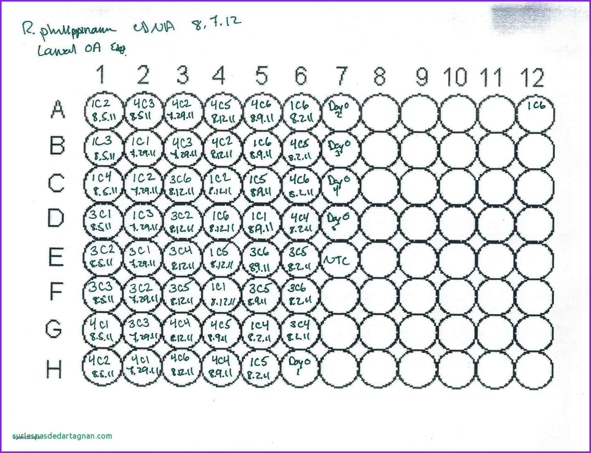Printable 96 Well Plate Template Excel In 96 Well Plate Template Excel Download For Free