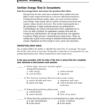 Active Reading Along With Skills Worksheet Active Reading