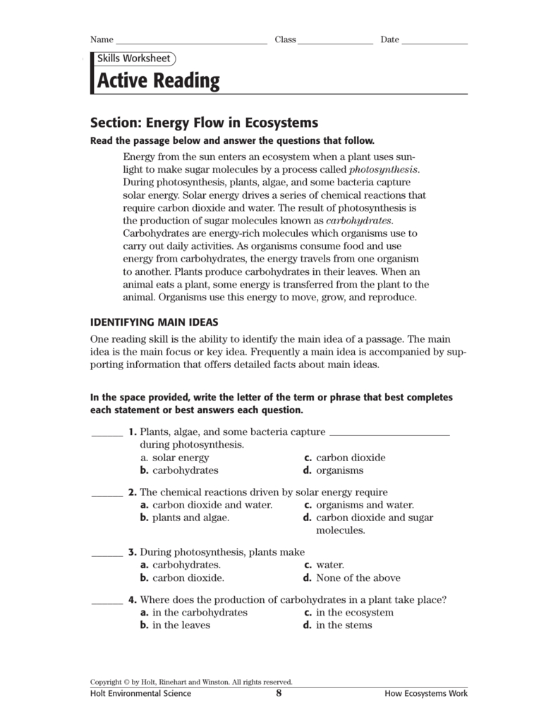 Active Reading Regarding Science 10 Worksheet 3 Energy Flow In Ecosystems Answer Key