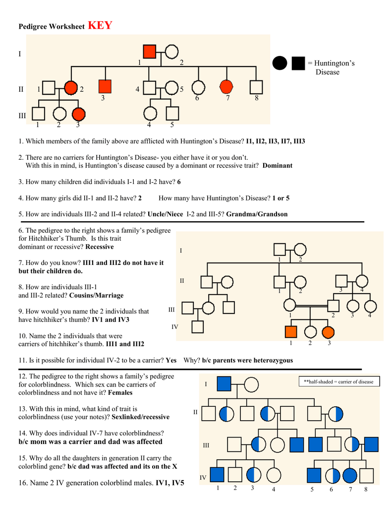 Answer Key Throughout Pedigree Worksheet Biology