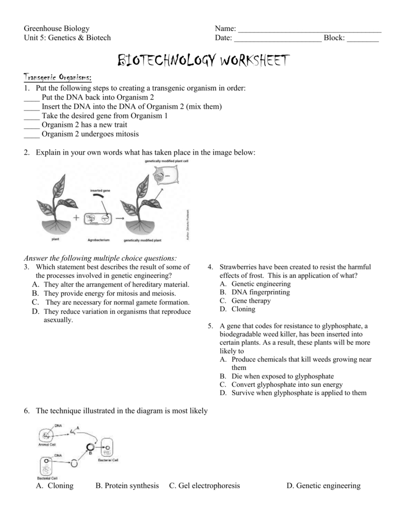 Biotechnology Worksheet With Introduction To Biotechnology Worksheet Answers