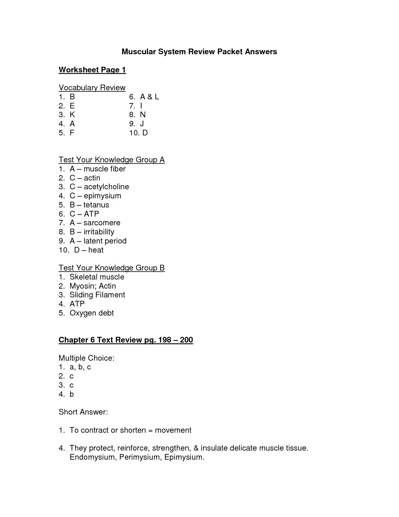 Digestive System Worksheet Answers  Briefencounters As Well As Digestive System Worksheet Pdf