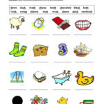 Digraphs Shchthckng Worksheet  Free Esl Printable Worksheets As Well As Th Worksheets Printable