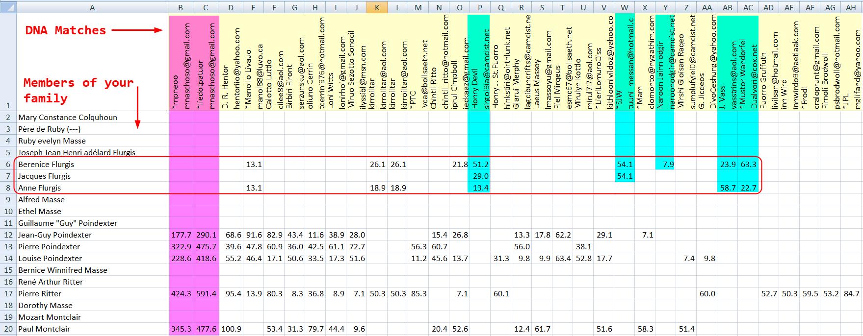 Dna Matches Inside Dna Match Spreadsheet