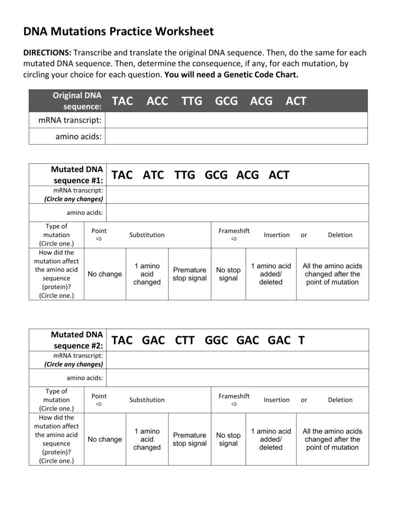 Dna Mutations Practice Worksheet In Dna Mutations Worksheet