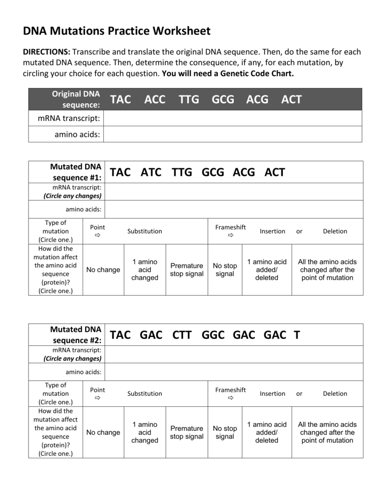 Dna Mutations Practice Worksheet Pertaining To Dna Mutations Practice Worksheet