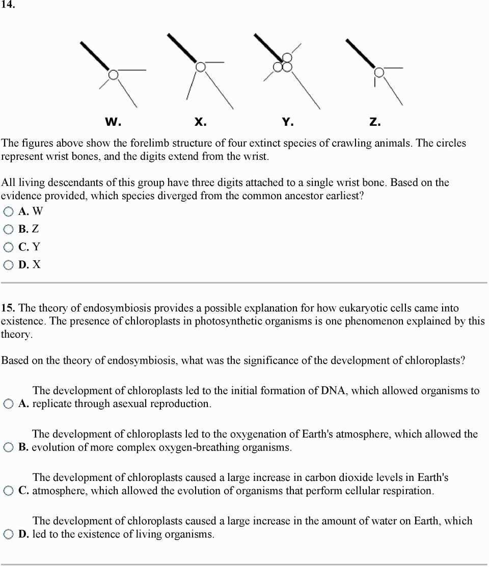 Dna Replication Coloring Worksheet Answer Key  Briefencounters Along With Dna Replication Coloring Worksheet Answer Key