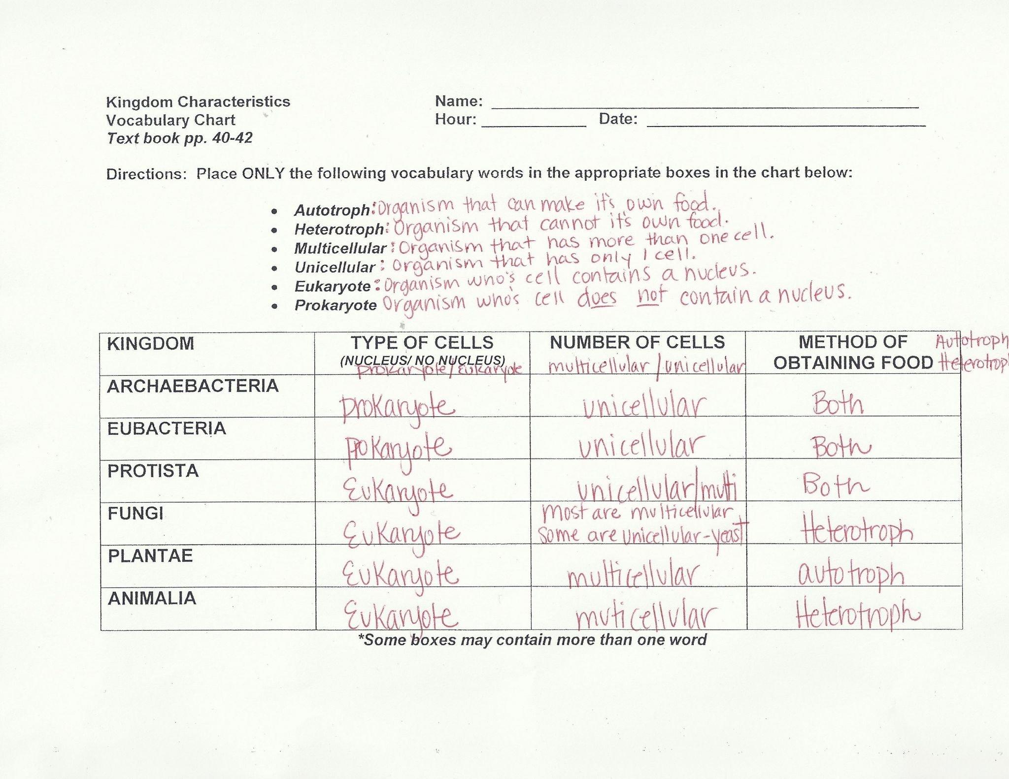 Dna Worksheet Answer Key Mr Hoyle  Briefencounters Inside Dna Worksheet Answer Key Mr Hoyle