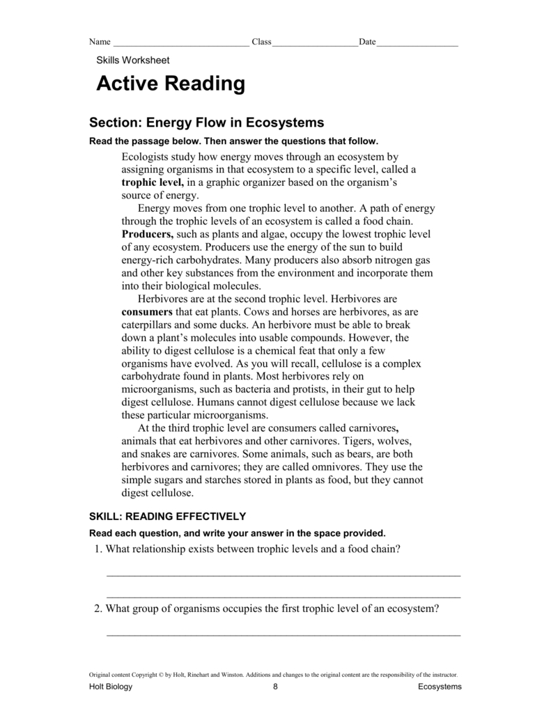 Energy Flow In Ecosystems Also Energy Flow In Ecosystems Worksheet