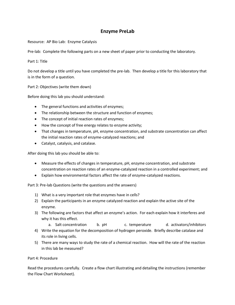 Enzyme Prelab Or Pre Lab Activity Worksheet Answers