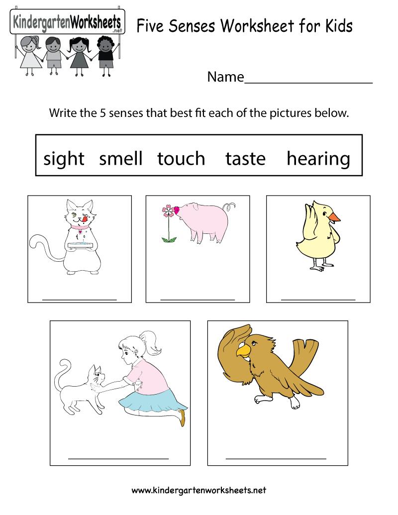 Five Senses Worksheet For Kids  Free Kindergarten Learning Worksheet And Preschool Spanish Worksheets