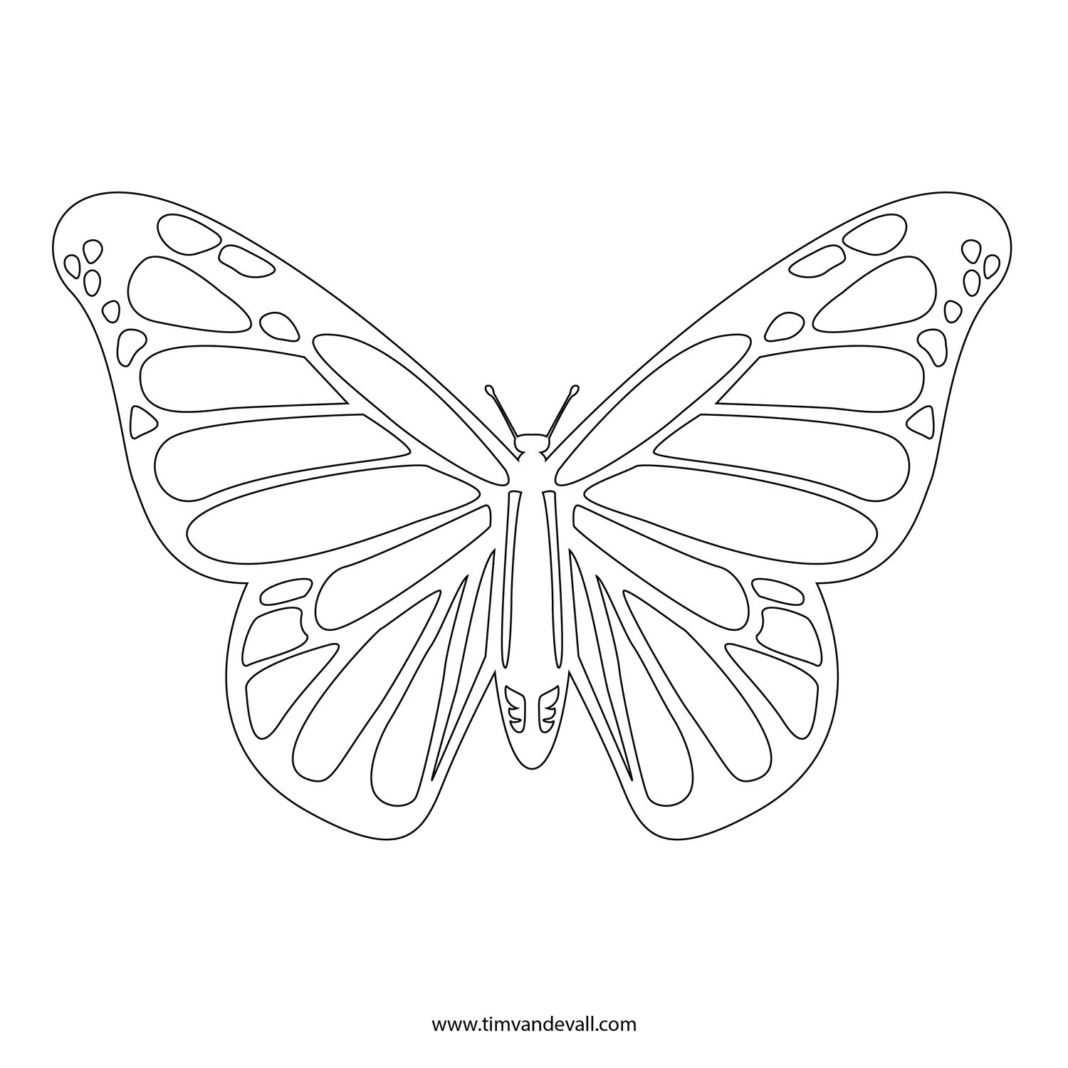 Free Monarch Butterfly Template Download Free Clip Art Free Clip Also Monarch Butterfly Worksheets