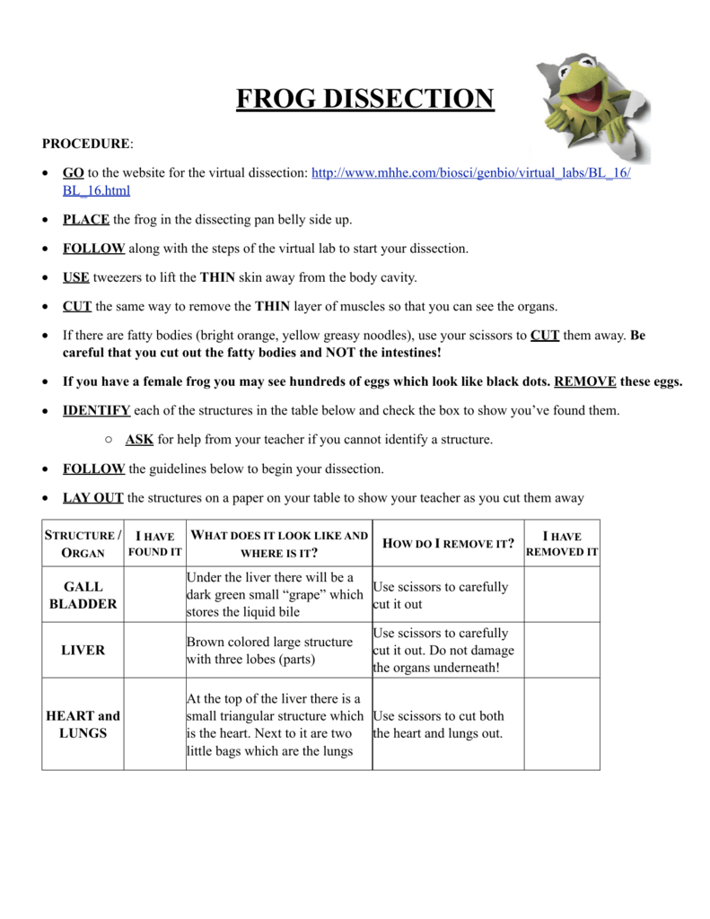 Frog Dissection Lab Sheet Also Frog Dissection Worksheet Answers