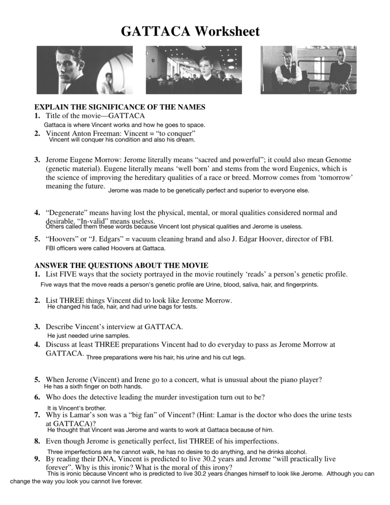 Gattaca Worksheet As Well As Gattaca Worksheet Biology Answers