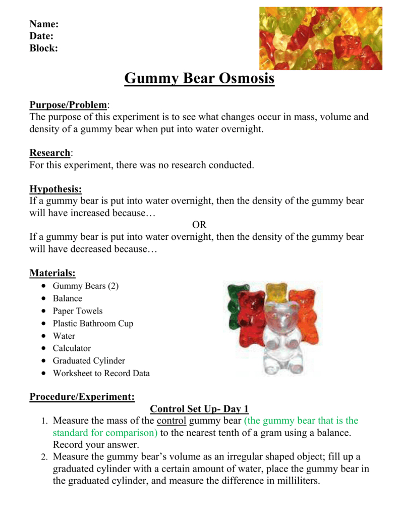 Gummy Bear Lab Write Up With Regard To Gummy Bear Science Experiment Worksheet