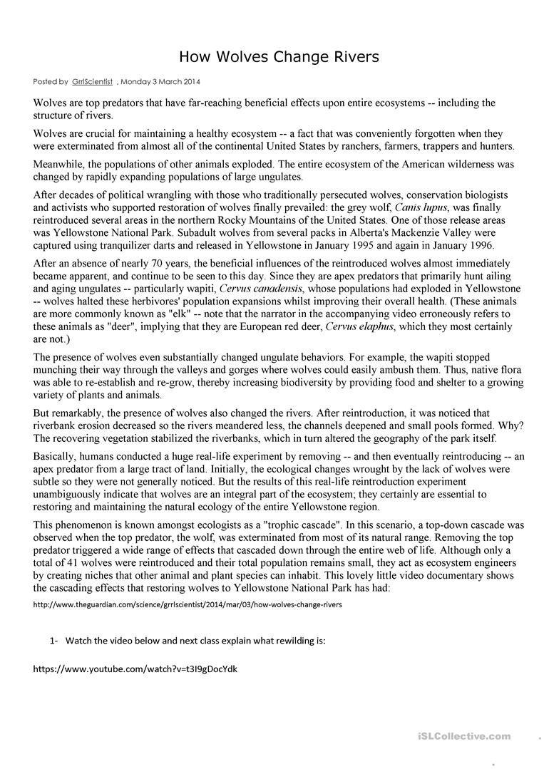 How Wolves Change Rivers Worksheet  Free Esl Printable Worksheets For Wolves In Yellowstone Worksheet