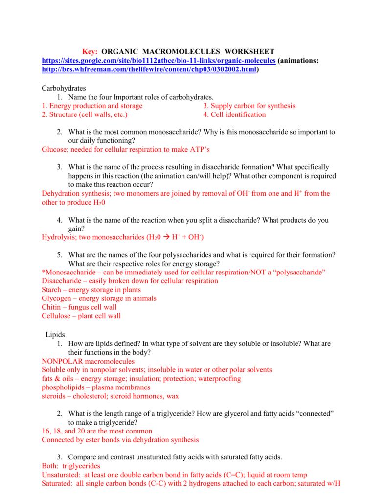 Key Organic Macromolecules Worksheet Or Organic Molecules Worksheet Answers
