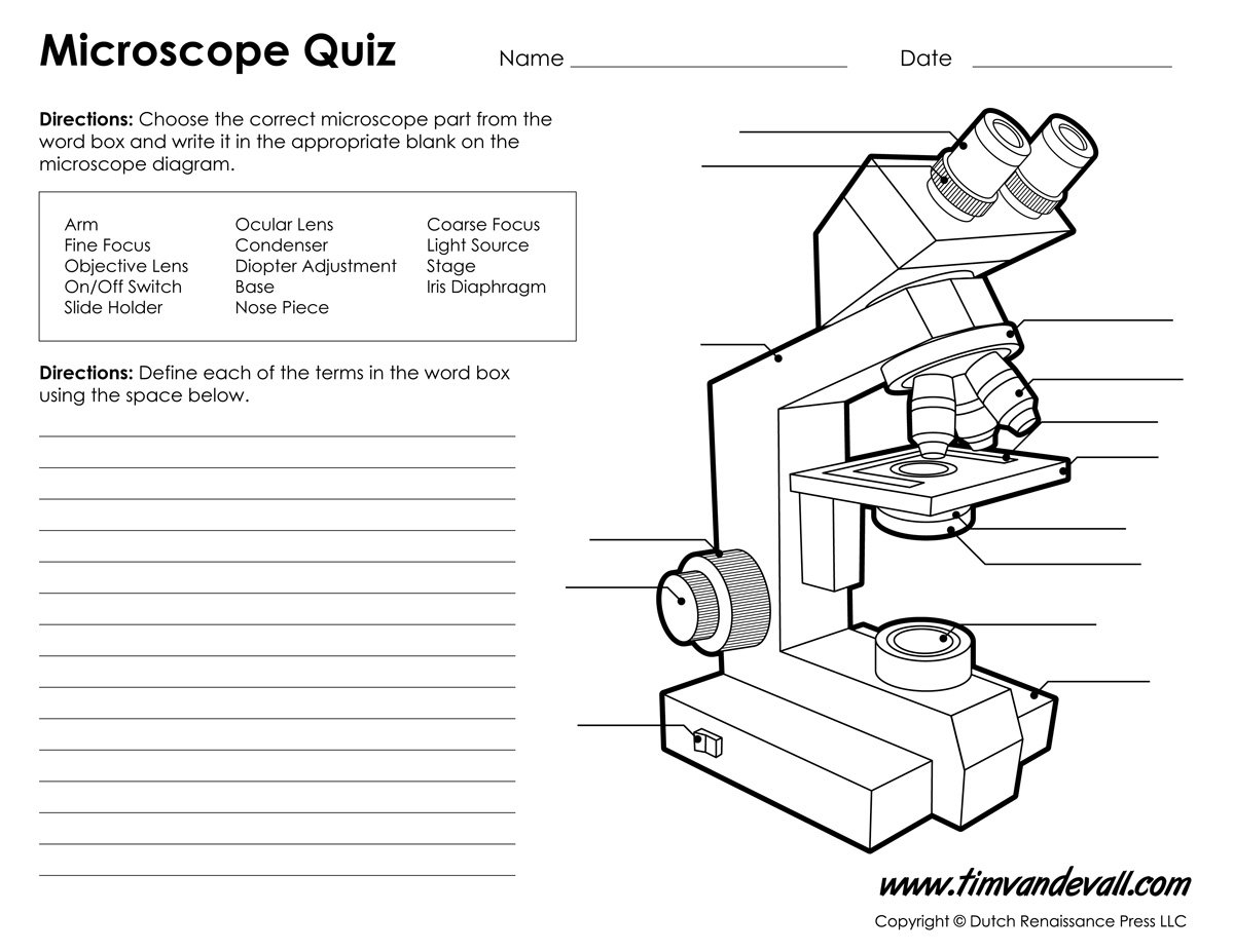 Microscope Diagram Labeled Unlabeled And Blank  Parts Of A Microscope Pertaining To Parts Of A Microscope Worksheet