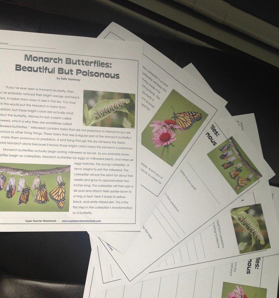 Monarch Butterflies Regarding Animal Migration Super Teacher Worksheets