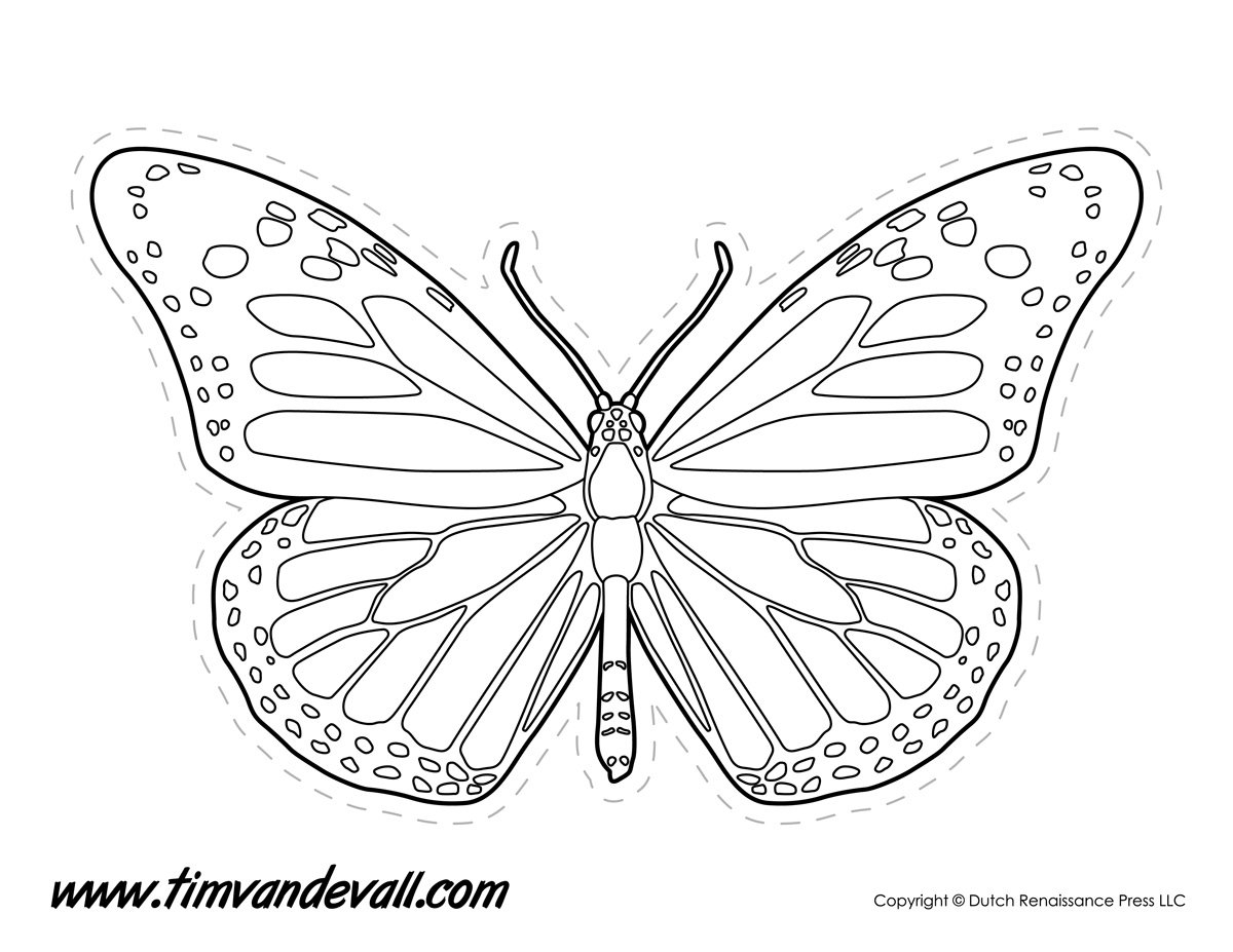 Monarch Butterfly Outline  Tim's Printables Or Monarch Butterfly Worksheets