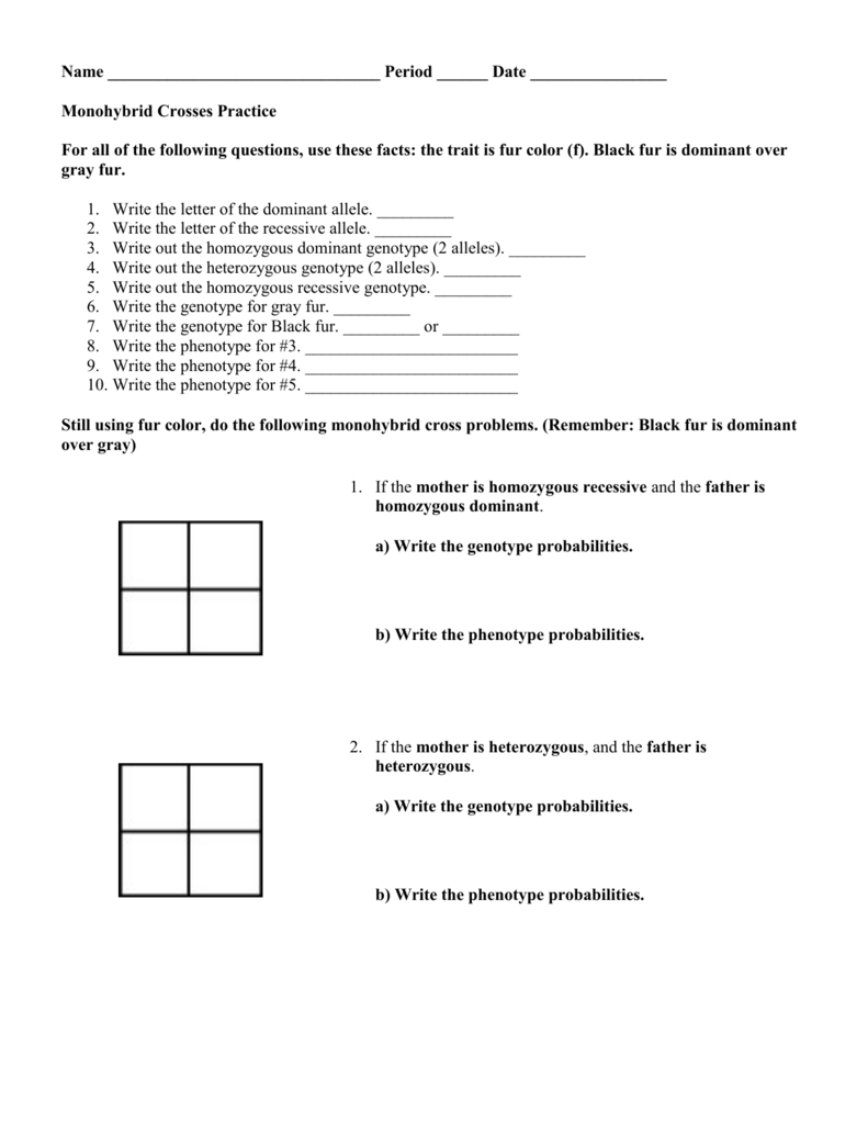 Monohybrid Cross Problems 2 Worksheet With Answers ...
