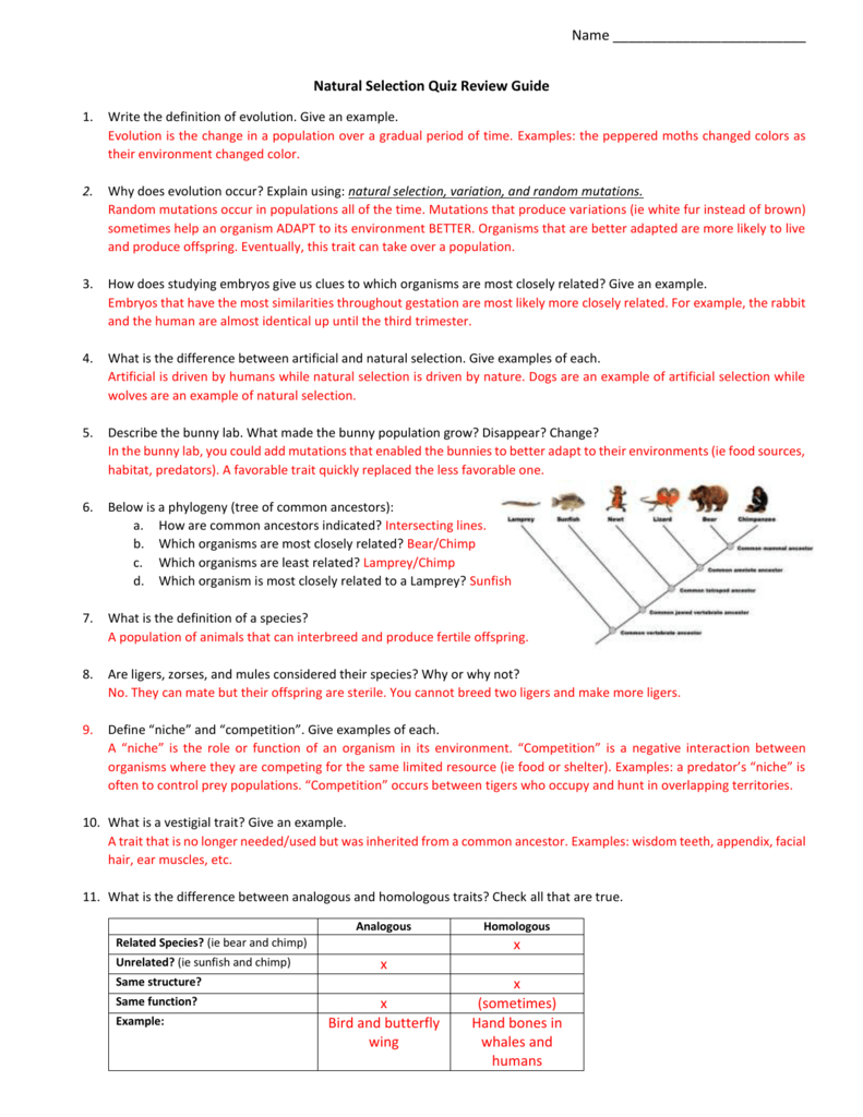 Evolution By Natural Selection Worksheet Answer Key ...
