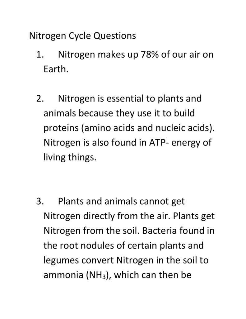 Nitrogen Cycle Homework Answer Key Intended For Nitrogen Cycle Worksheet Answer Key