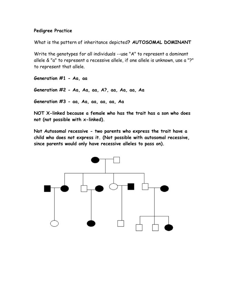 Pedigree Practice Problems For Pedigree Practice Problems Worksheet