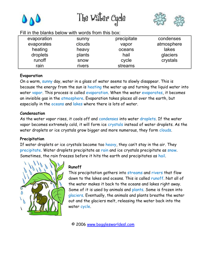 Precipitation  Istituto Bonsignori And The Water Cycle Worksheet Answer Key