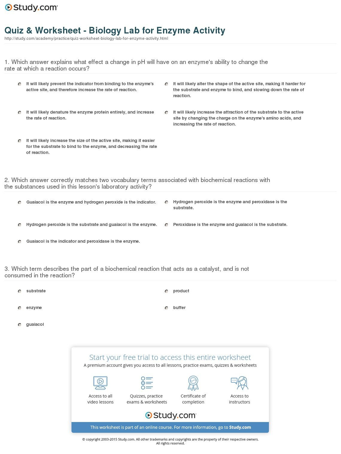 Quiz  Worksheet  Biology Lab For Enzyme Activity  Study Along With Enzyme Reactions Worksheet