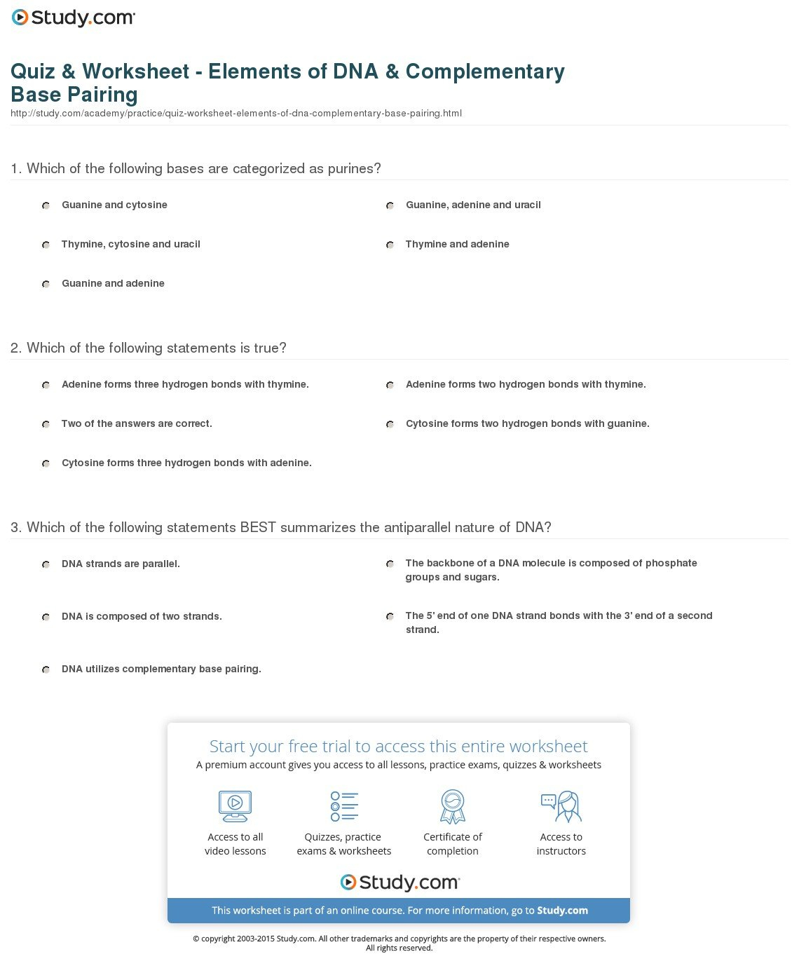 Quiz  Worksheet  Elements Of Dna  Complementary Base Pairing In Dna Base Pairing Worksheet Answer Key