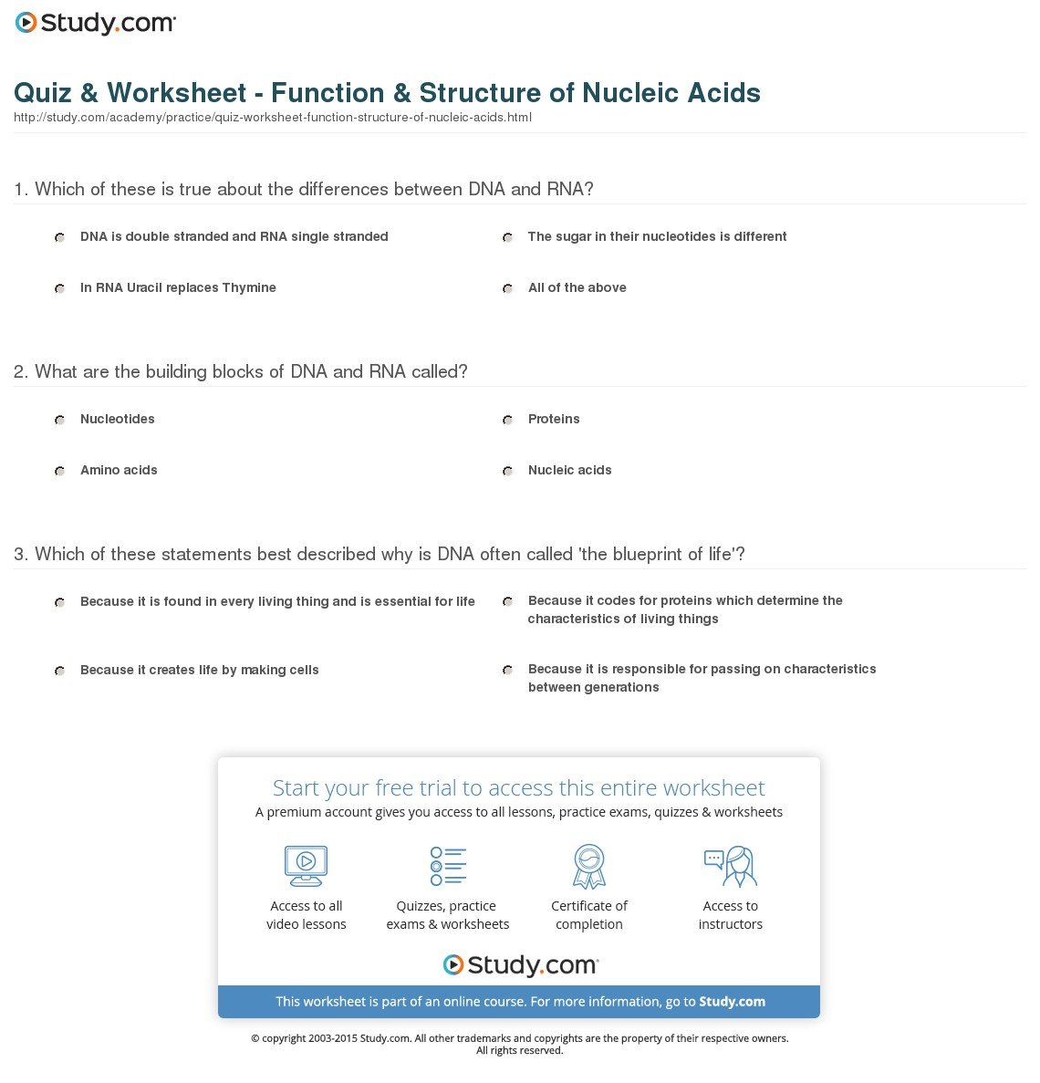 Quiz  Worksheet  Function  Structure Of Nucleic Acids  Study Regarding Nucleic Acids Worksheet