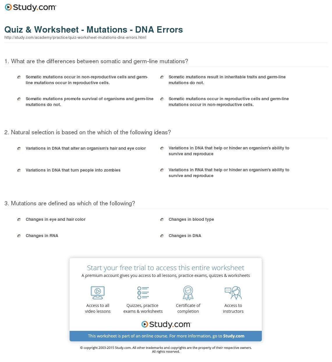 Quiz  Worksheet  Mutations  Dna Errors  Study For 13 3 Mutations Worksheet Answer Key