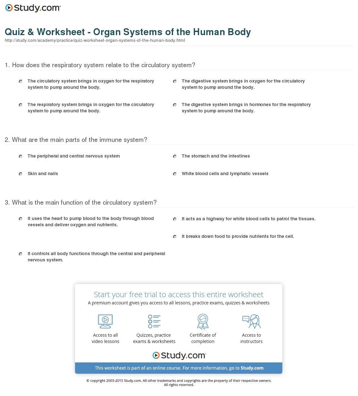 Quiz  Worksheet  Organ Systems Of The Human Body  Study As Well As Human Body Systems Worksheet Answer Key