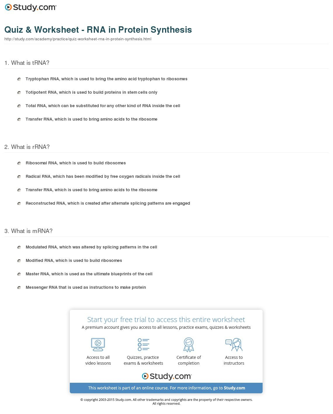 Quiz  Worksheet  Rna In Protein Synthesis  Study For Rna Worksheet Answers
