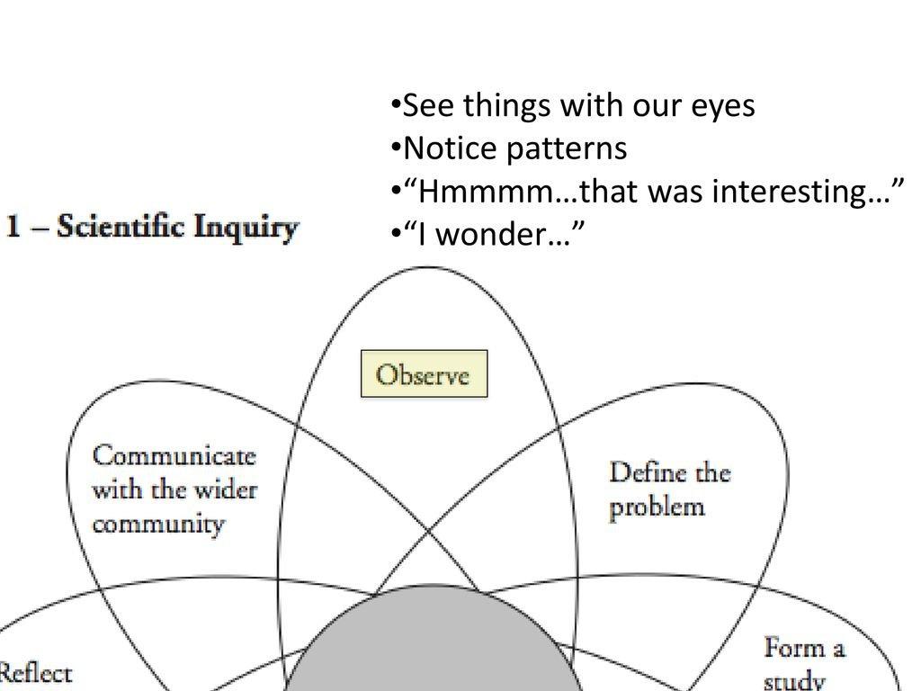 Scientific Inquiry Pogil Answer Key Scientific Inquiry Pogil Answer Intended For Scientific Inquiry Worksheet Answer Key