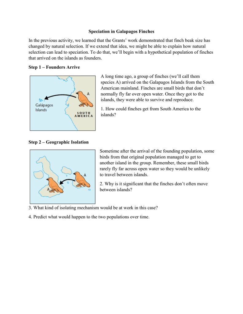 Speciation In Galapagos Finches Throughout Galapagos Island Finches Worksheet