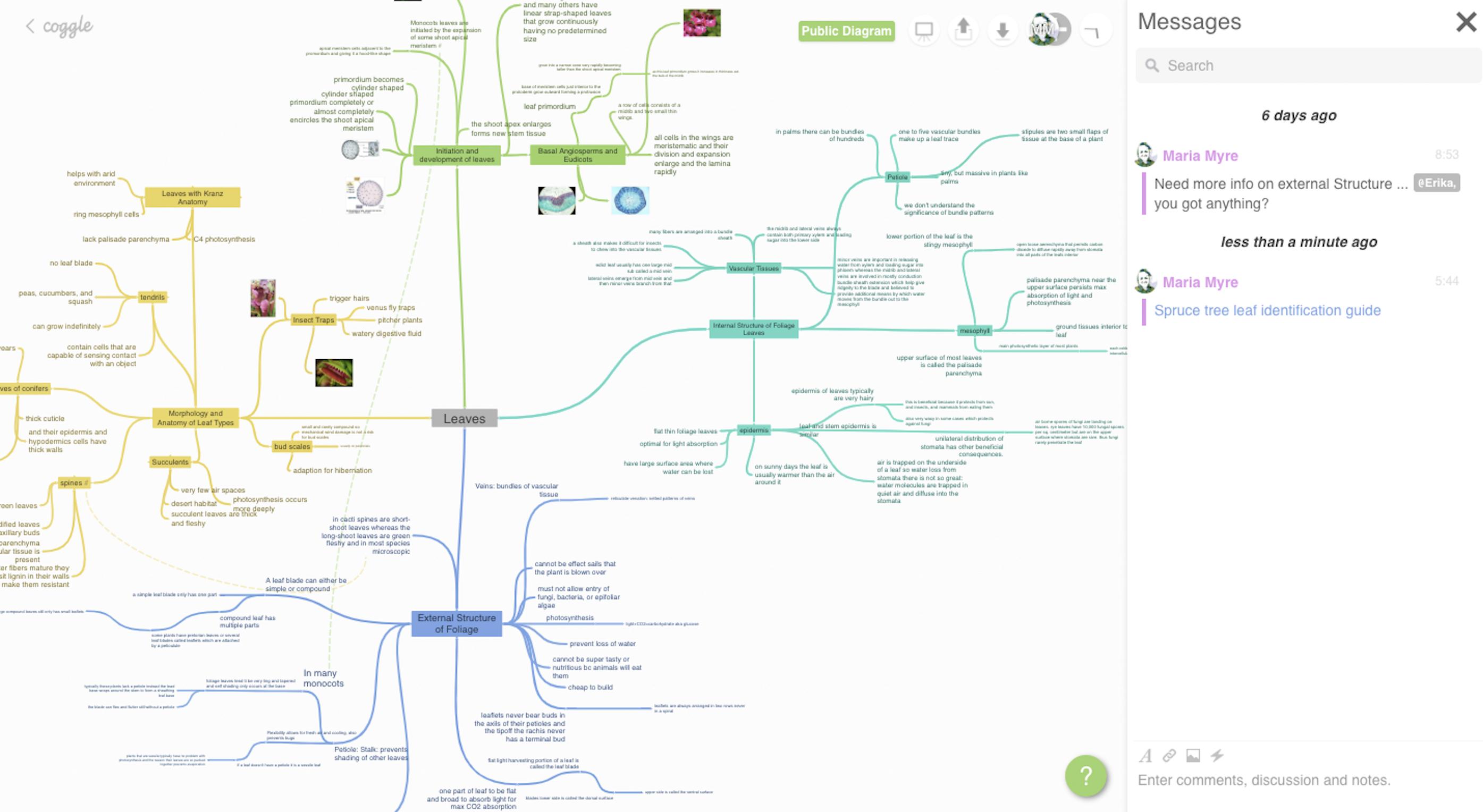 The Best Mind Mapping Software In 2019 Also Mind Map Spreadsheet