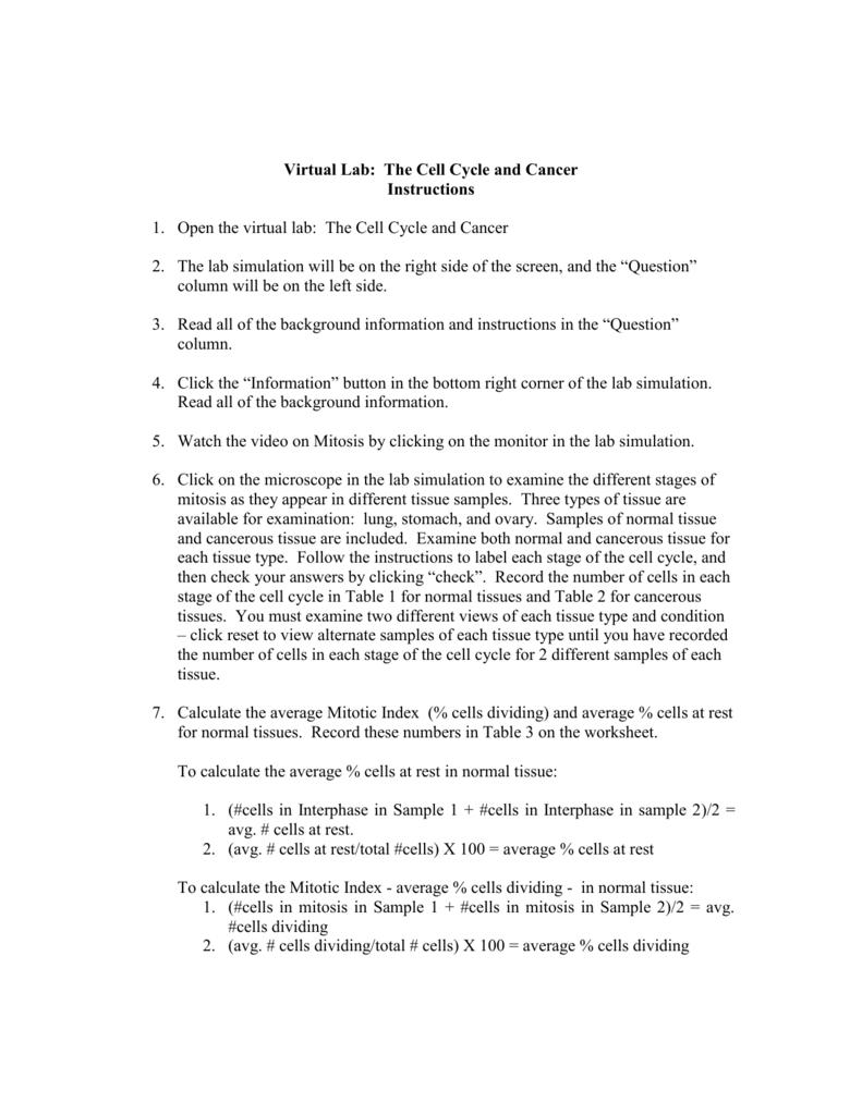 Virtual Lab The Cell Cycle And Cancer For Virtual Lab The Cell Cycle And Cancer Worksheet Answers