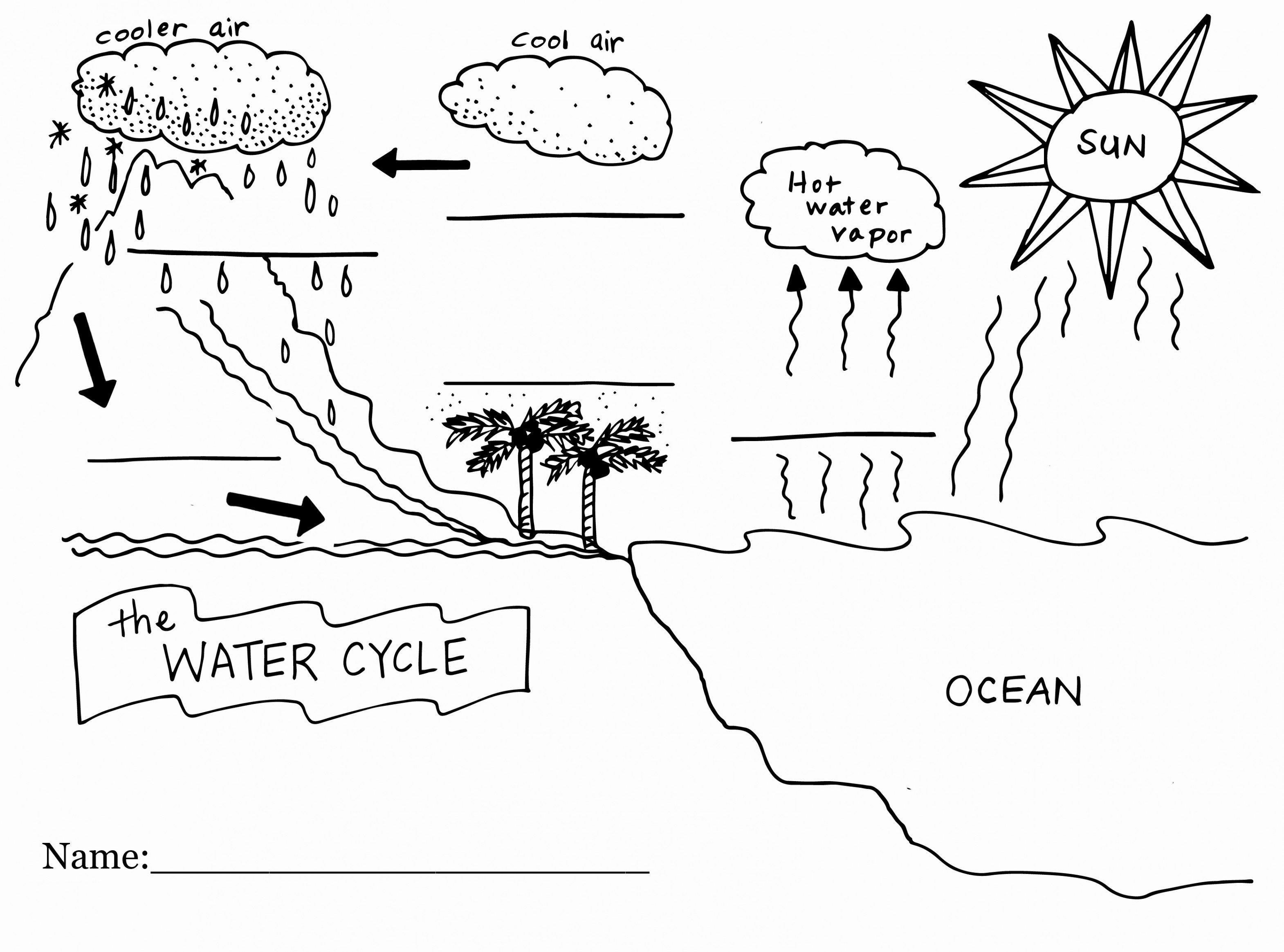 Water Diagram To Label  Blog Wiring Diagram For Water Cycle Worksheet Pdf