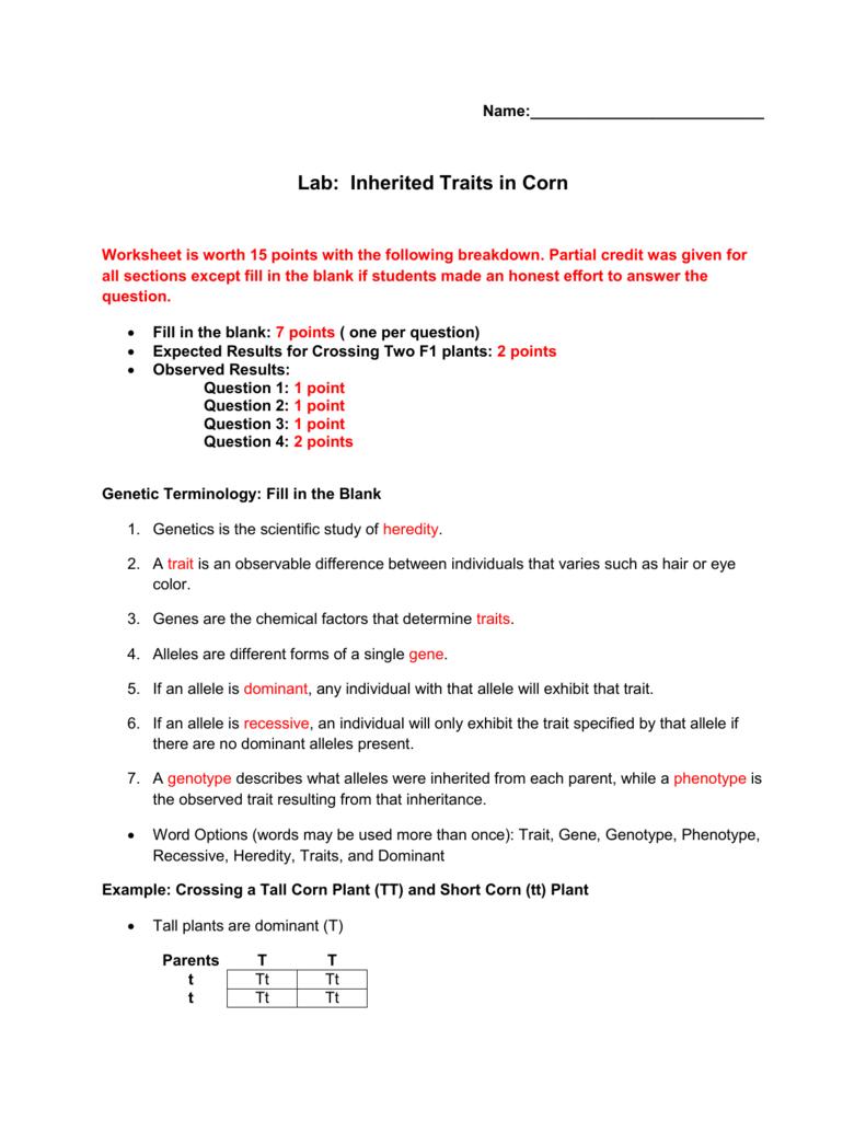 Worksheet Key Or Inherited Traits Worksheet