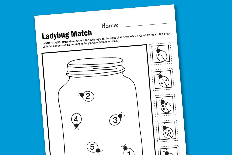 Worksheet Wednesday Ladybug Matching  Paging Supermom Together With Ladybug Math Worksheets