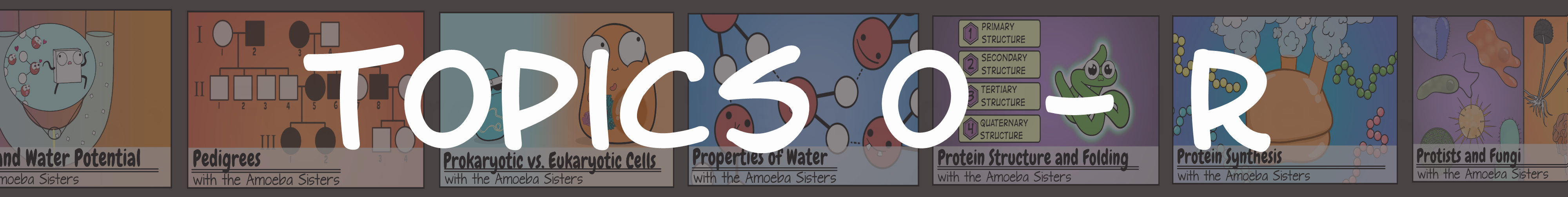 Amoeba Sisters Handouts With Regard To The Amoeba Sisters The Cell Cycle And Cancer Video Worksheet
