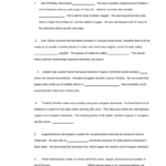 Bill Nye 100 Greatest Discoveries In Chemistry And Bill Nye Plants Worksheet Answer Key