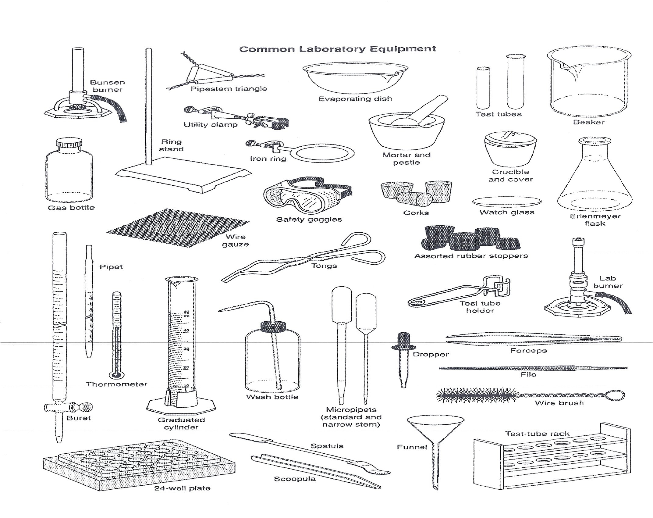 Brilliant Ideas Of Science Lab Equipment Worksheet With 8Th Grade With Chemistry Lab Equipment Worksheet