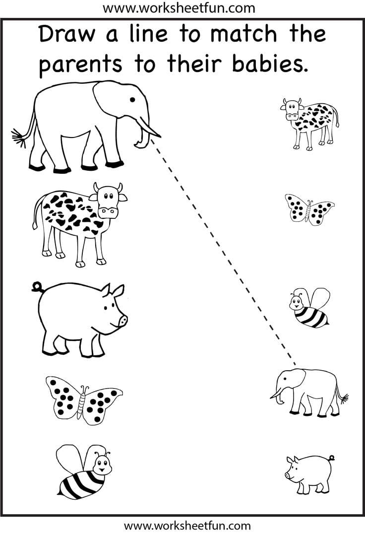 Craftsactvities And Worksheets For Preschooltoddler And Kindergarten With Regard To Preschool Matching Worksheets