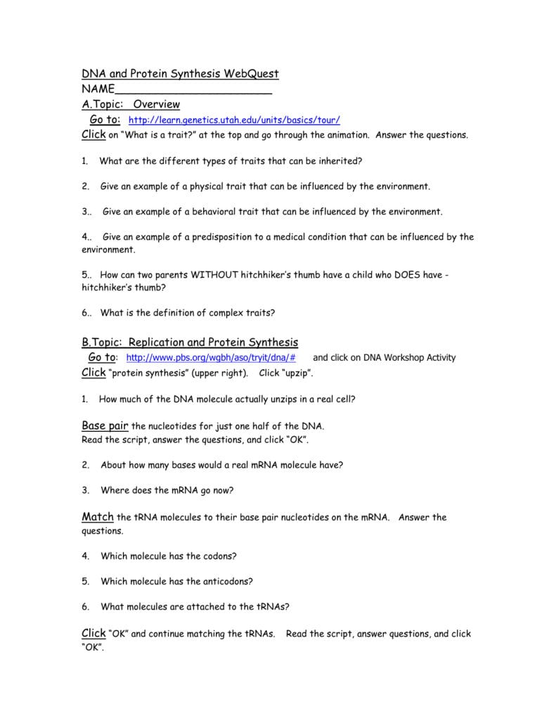 Protein Synthesis Webquest Worksheet Answer Key ...